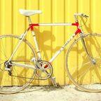 PowerUnity gegen Fahrraddiebstahl gpxbike.de
